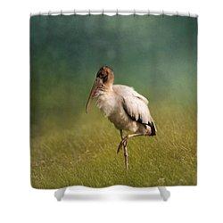 Wood Stork - Balancing Shower Curtain by Kim Hojnacki