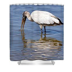 Wood Stork Shower Curtain by Louise Heusinkveld