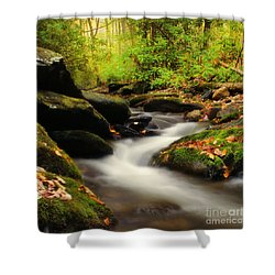 Woodland Fantasies Shower Curtain by Darren Fisher