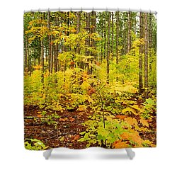 Woodland Panorama Shower Curtain by Michael Peychich
