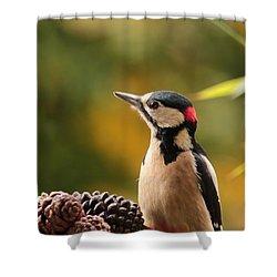 Woodpecker 2 Shower Curtain by Heike Hultsch