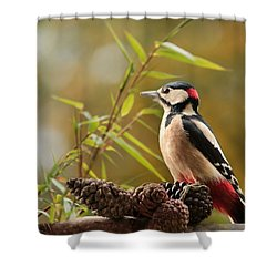 Woodpecker 3 Shower Curtain by Heike Hultsch