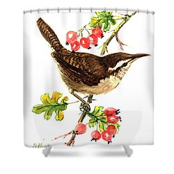 Wren And Rosehips Shower Curtain by Nell Hill