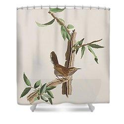 Wren Shower Curtain by John James Audubon