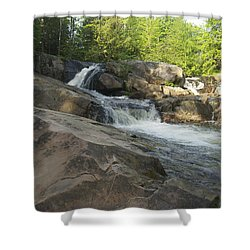 Yellow Dog Falls 2 Shower Curtain by Michael Peychich