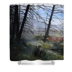 Yellowstone National Park 4 Shower Curtain by Xueling Zou