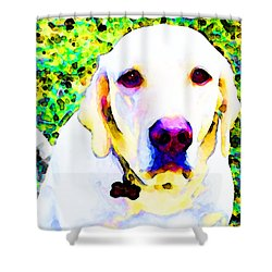 You Are My World - Yellow Lab Art Shower Curtain by Sharon Cummings