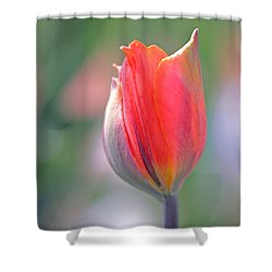 Youthful Exuberance Shower Curtain by Rona Black