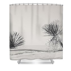 yucca in White sands Shower Curtain by Ralf Kaiser