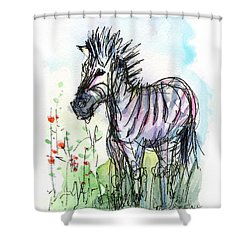 Zebra Painting Watercolor Sketch Shower Curtain by Olga Shvartsur