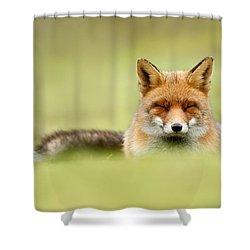 Zen Fox Series - Zen Fox In A Sea Of Green Shower Curtain by Roeselien Raimond