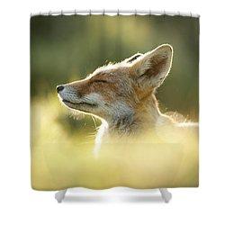 Zen Fox Series - Zen Fox Up Close Shower Curtain by Roeselien Raimond