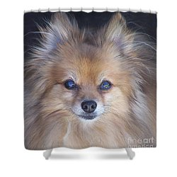 Zoom Shower Curtain by Brian  Commerford