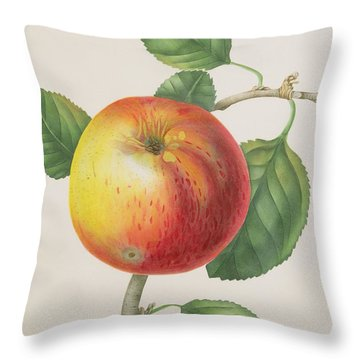 An Apple Throw Pillow by Elizabeth Jane Hill
