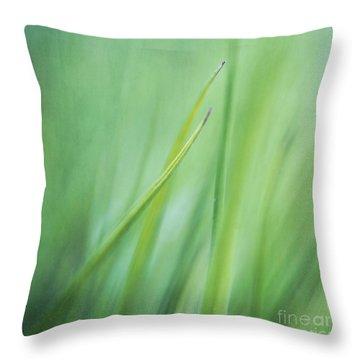 Feathery  Throw Pillow by Priska Wettstein