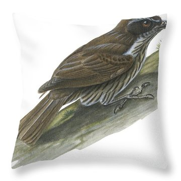 Philippine Creeper Throw Pillow by Anonymous