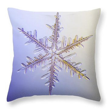 A Real Snowflake Showing The Classic Throw Pillow by Marion Owen