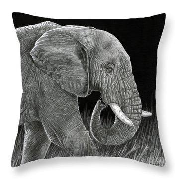 Ancient Throw Pillow by Sarah Batalka