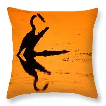Anhinga Throw Pillow by Art Wolfe