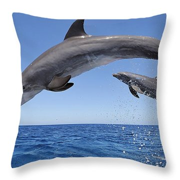 Beauty Throw Pillow by Marvin Blaine