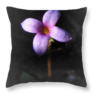 Bluet Throw Pillow by Matt Taylor