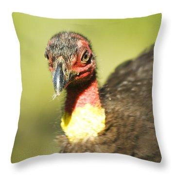 Brush Scrub Turkey Throw Pillow by Jorgo Photography - Wall Art Gallery