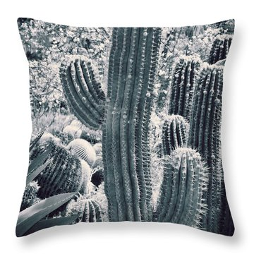 Cactus Land Throw Pillow by Kelley King