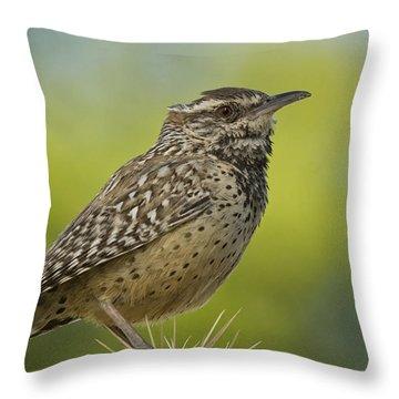 Cactus Wren  Throw Pillow by Saija  Lehtonen