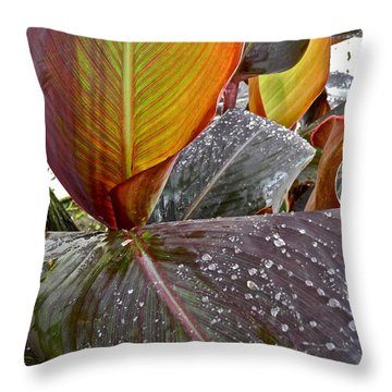 Canna Lily I  Throw Pillow by Kirsten Giving