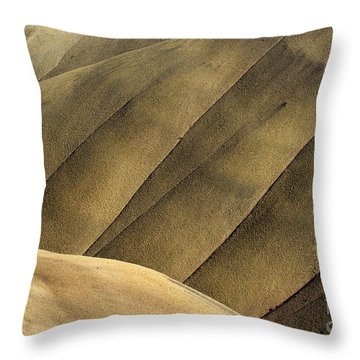 Desert Lines Throw Pillow by Mike  Dawson