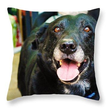 Dog 4 Throw Pillow by Naomi Burgess