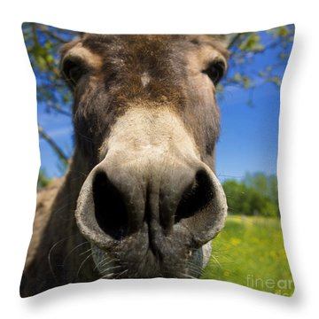 Donkey Throw Pillow by Bernard Jaubert