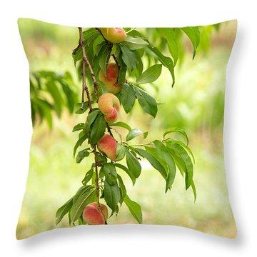 Donut Peaches Throw Pillow by Iris Richardson