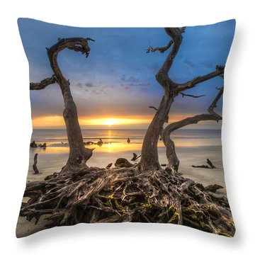 Driftwood Throw Pillow by Debra and Dave Vanderlaan