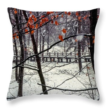 Early Snow Throw Pillow by Bob Phillips