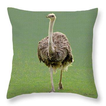 Emu Throw Pillow by Ellen Henneke