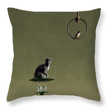 Equilibrium IIi Throw Pillow by Cynthia Decker