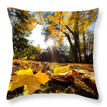 Fall Autumn Park. Falling Leaves Throw Pillow by Michal Bednarek