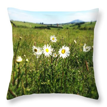 Field Of Flowers Throw Pillow by Les Cunliffe