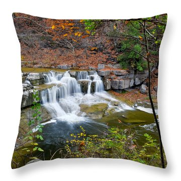 Finger Lakes Waterfall Throw Pillow by Frozen in Time Fine Art Photography