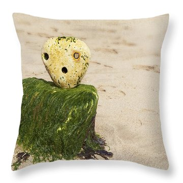 Frozen In Time Throw Pillow by Svetlana Sewell