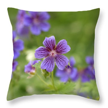 Geranium Himalayense Throw Pillow by Frank Tschakert