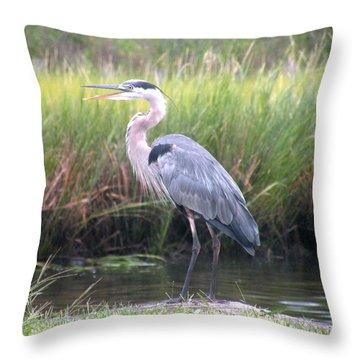 Great Blue Heron Throw Pillow by Kim Bemis