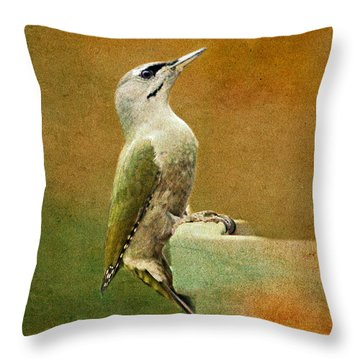 Grey-headed Woodpecker Throw Pillow by Heike Hultsch
