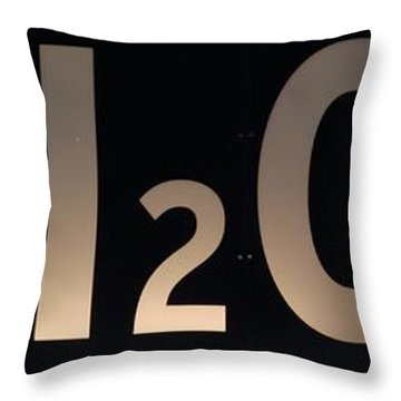 H2O Throw Pillow by Rob Hans