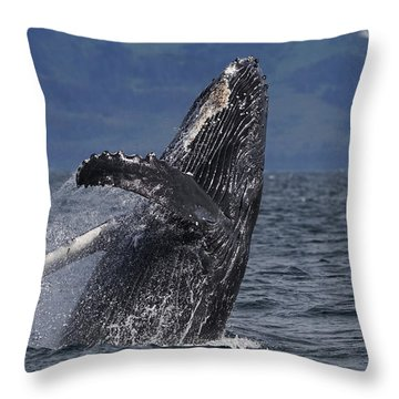 Humpback Whale Breaching Prince William Throw Pillow by Hiroya Minakuchi