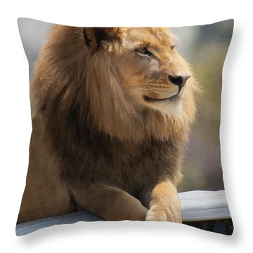 Majestic Lion Throw Pillow by Sharon Foster