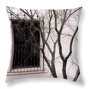 Mission Church Window Throw Pillow by Joe Kozlowski