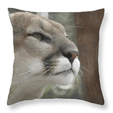 Mountain Lion Throw Pillow by Ernie Echols