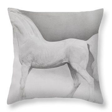 Moving Image Throw Pillow by Emma Kennaway